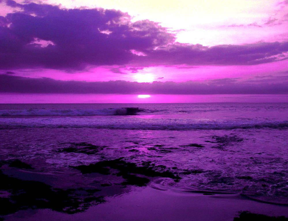 Пурпурный цвет это какой картинка 1