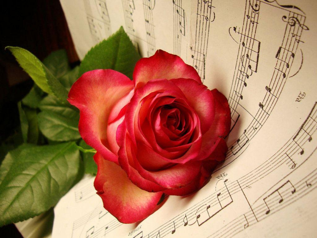 Музыкальные картинки анимашки цветы 4