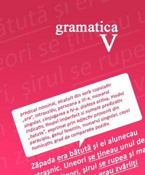 Gramatica clasa a V-a