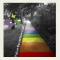 Life Under Rainbow