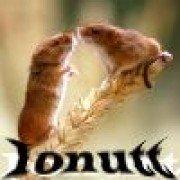 ionutt