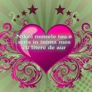 nikol_8225