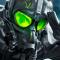 GreenEagl3