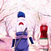 Sakura13574
